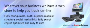Search engine optimised e-commerce web stores